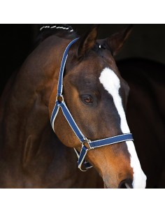 Amigo Headcollar & Leadrope Set