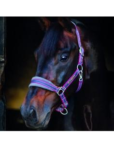 Horseware Rambo  Padded Head Collar - Padded