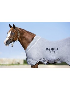 Rambo Dry Rug Grey Front