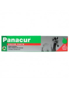 Panacur Paste Horse Wormer (Syringe)