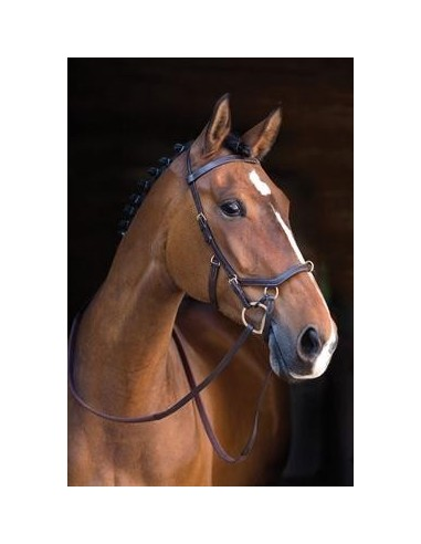 Rambo Micklem Multibridle Rubber Reins