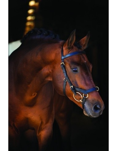 Horseware Rambo Micklem Multibridle Reins