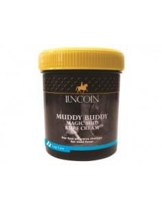 Lincoln Mud Kure