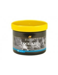 Lincoln Cool Gel - 400g