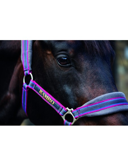 Rambo GP Padded Head Collar (DHAG40)