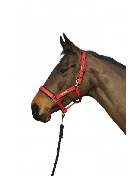 Cottage Craft Turnout Safe Head Collar red