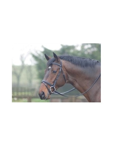 Cottage Craft Oxford Bridle
