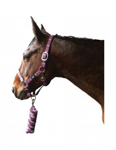 Hy Tartan Head Collar with Lead Rope Raspberry/White/Navy