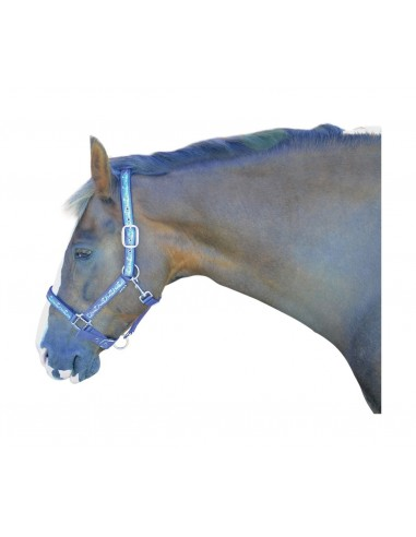 Hy  Pony Love Head Collar Purple blue