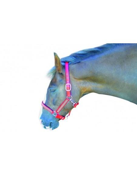 Hy Diamante Head Collar Pink