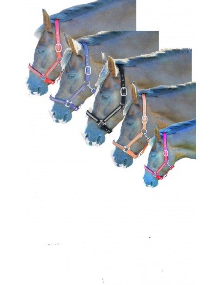 Hy Diamante Head Collar set