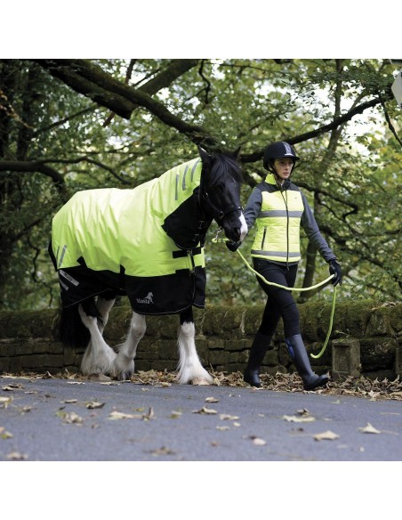 Masta HI Viz 200g Fixed Neck Turnout Rug  with rider
