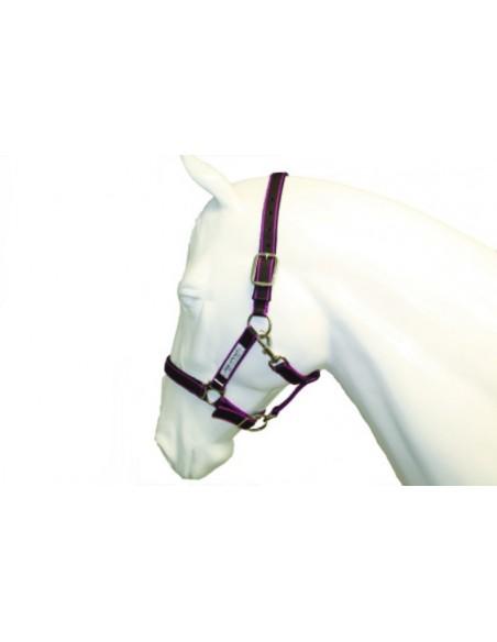 Horseware Amigo Headcollar navy silver