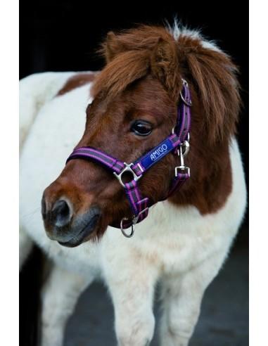 Horseware Amigo Headcollar black purple mint