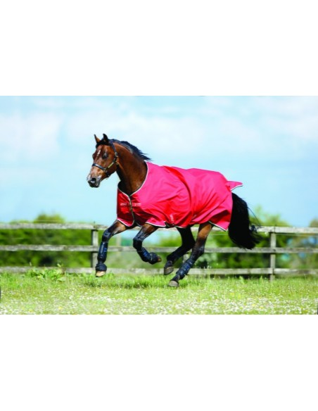 Horseware Amigo Hero 6 50g Turnout Lite Rug red