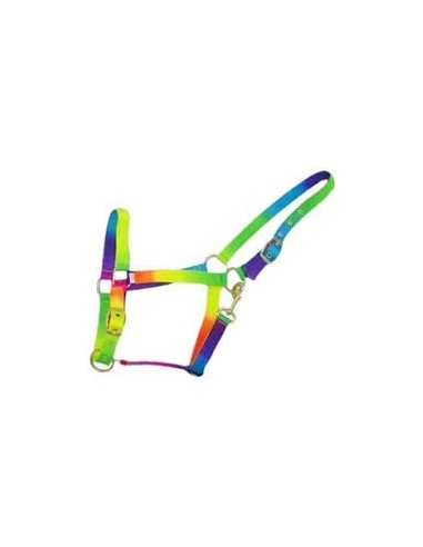 Rainbow Head Collar