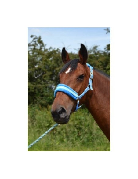 Fluffy Headcollar Sky Blue