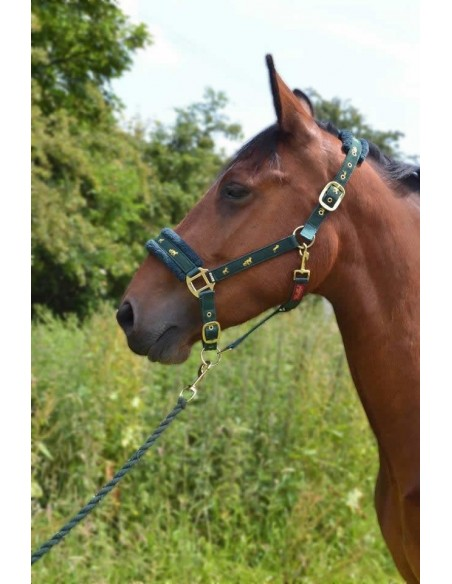 Fluffy Headcollar  Green