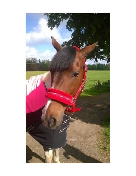 Fluffy Headcollar Red
