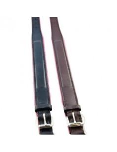 Companion Leather Dog Collar with Coloured Padding